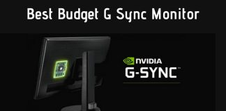 Best Budget G Sync Monitor at Affordable Price