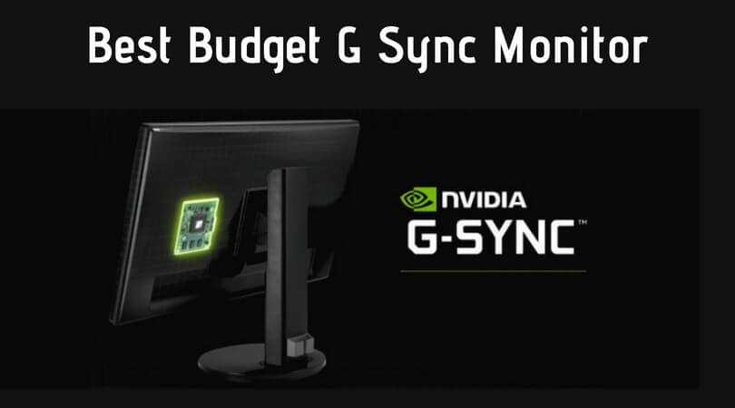 Best Budget G Sync Monitor at Affordable Price! 2019 Reviews