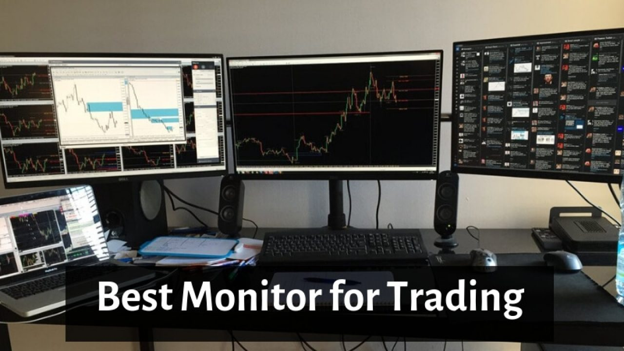 Best Monitor For Trading 2019 Best Monitor for Trading   Top Huge Screen Monitor for Stock Trading