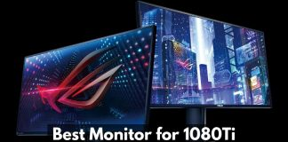 Best Monitor for 1080Ti