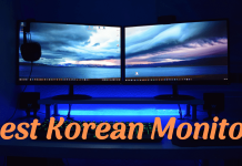 Best Korean monitor